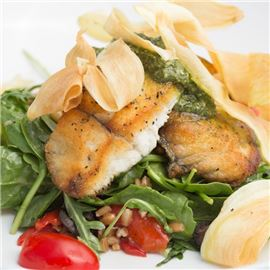 mediterranian-sea-bass-salad-at-cucina-venti-restaurant-photo-03